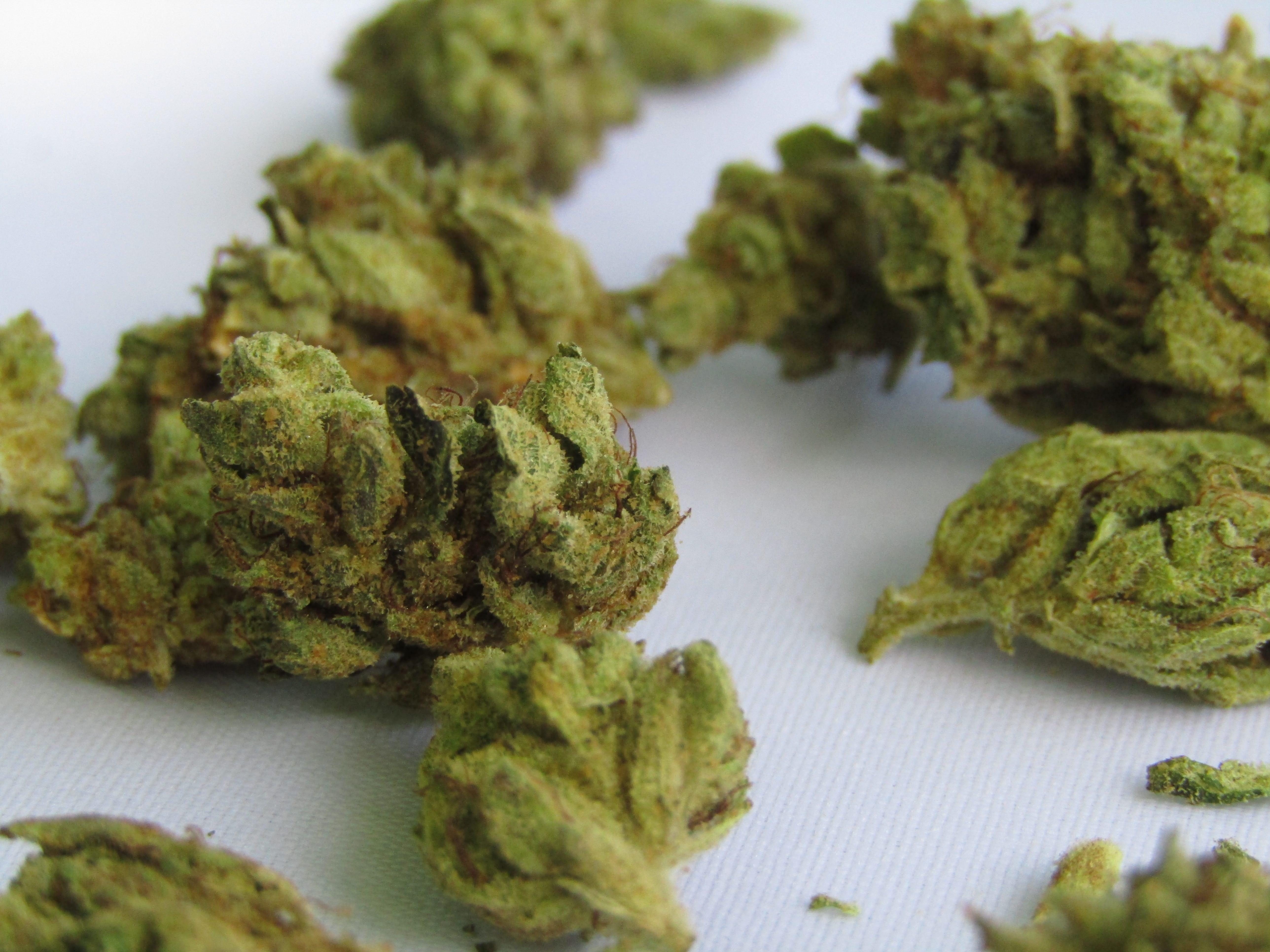 Nación Cannabis | ¿A qué no debe oler la marihuana?
