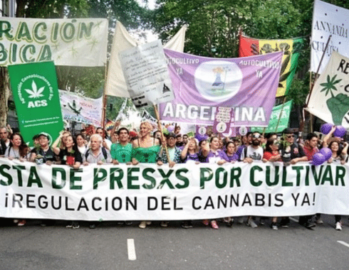 regulacion cannabis argentina