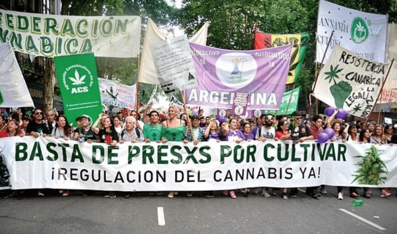Nación Cannabis | Argentina no quiere que sus cárceles se sigan llenando de consumidores de cannabis