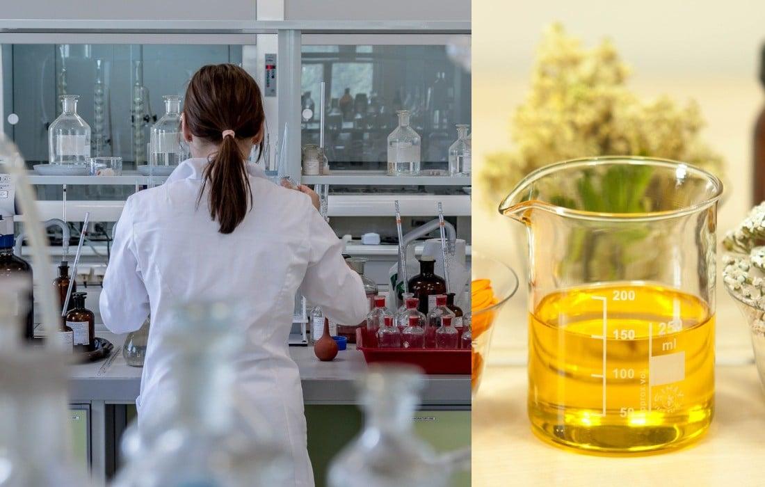 Nación Cannabis | ¿Aceite cannábico de oro?: 30 000 dólares por litro
