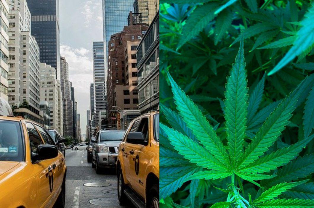 Nación Cannabis | Cannabis legal en Nueva York podría ser una realidad este 2020
