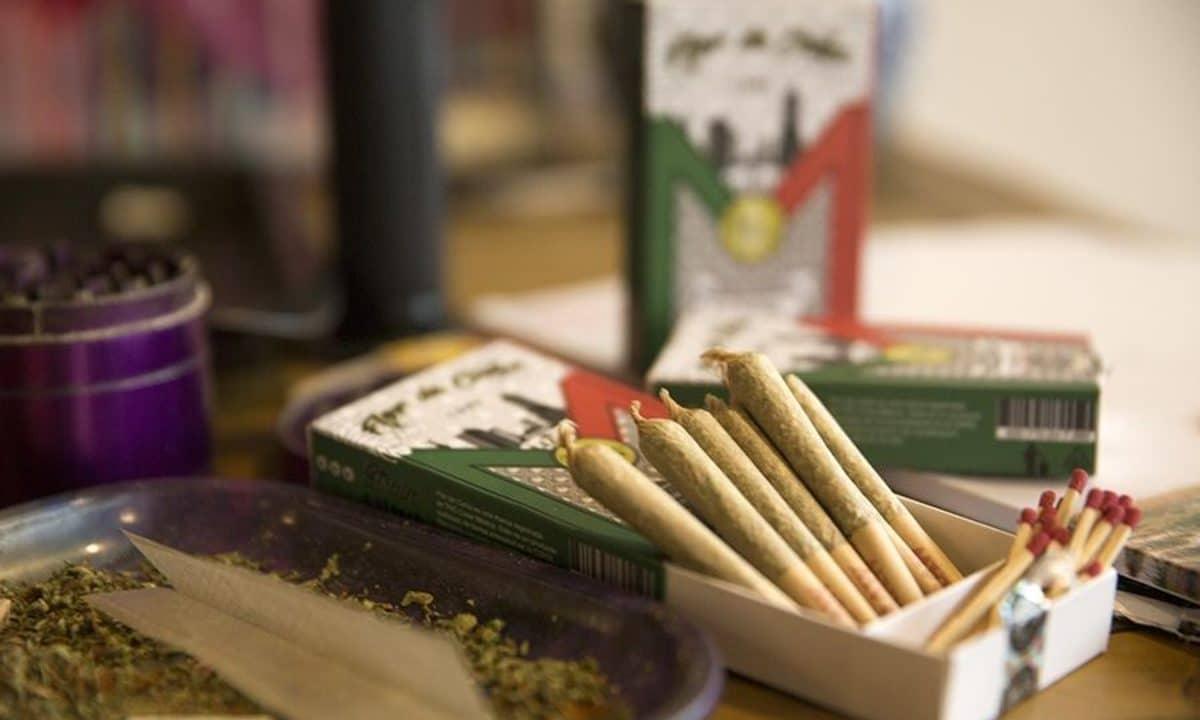 Nación Cannabis | Lanzan la primera cajetilla de cigarros de marihuana en México, ¡y no es ilegal!