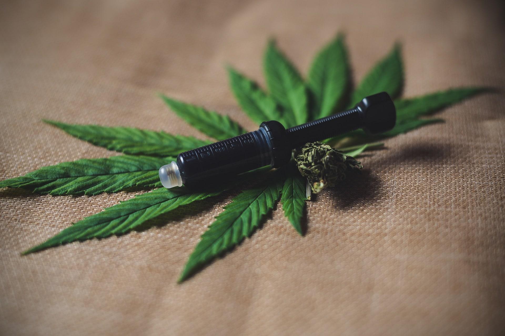 Nación Cannabis | ¡Por fin! Científicos crean el primer medicamento de cannabis para la epilepsia