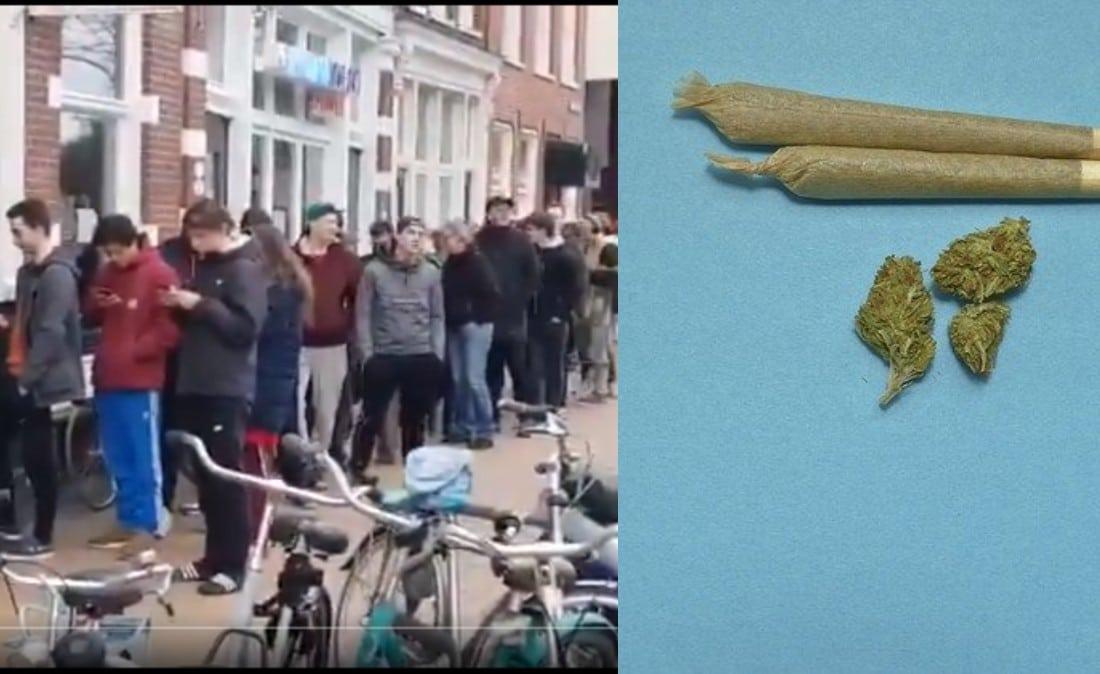 Nación Cannabis | El COVID-19 desata compras por pánico en tiendas de cannabis (VIDEO)