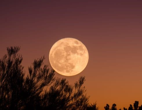 cannabis y la luna