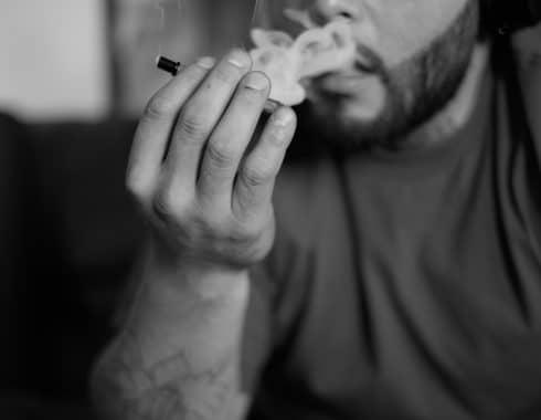 Cuál es el cannabis más potente