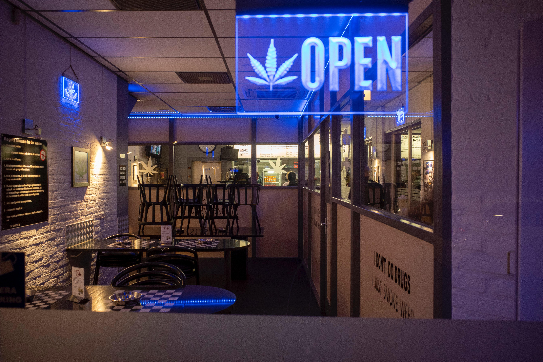 Nación Cannabis | ¿Por qué invertir en cannabis?