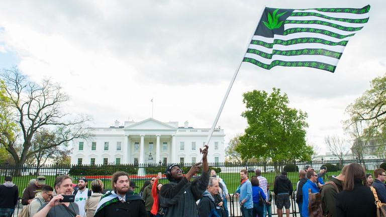 Washington analiza el cultivo casero de marihuana