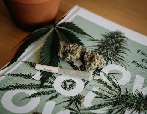 Legalización de cannabis