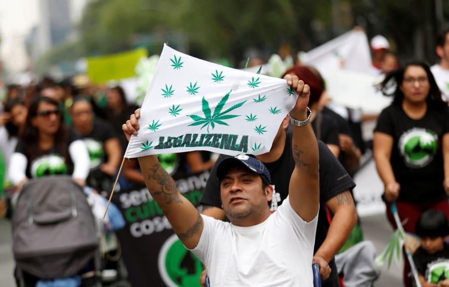 Pronto se podría consumir cannabis legal en México