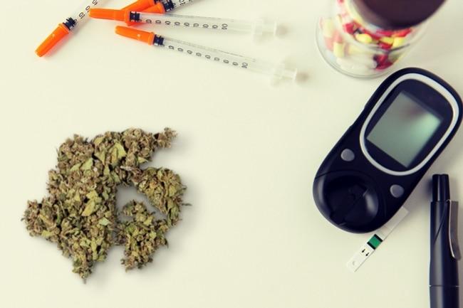 Presionan para investigar efectos del Cannabis en diabetes