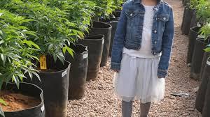 Médicos de EU apoyan marihuana medicinal para niños con cáncer