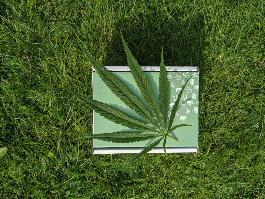 marihuana en tu casa