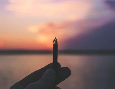 4/20 clave cultura cannabis