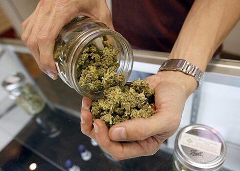 Uruguay analiza vender marihuana a turistas