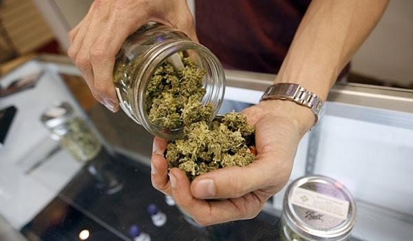 Nación Cannabis | Uruguay analiza vender marihuana a turistas
