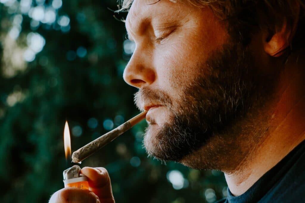 Marijuana Justice dará cannabis de productores locales