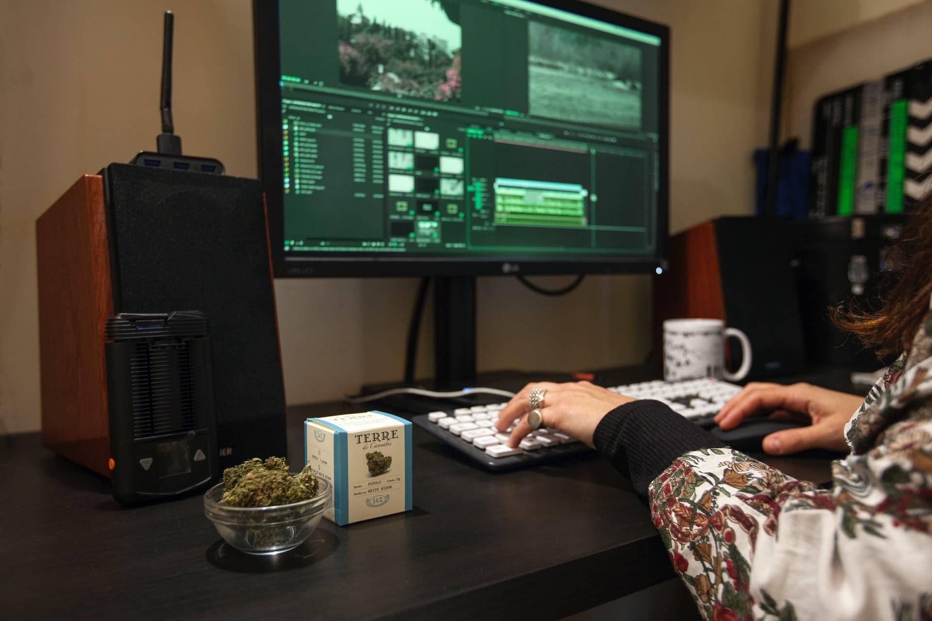 Nación Cannabis | La pandemia populariza el uso de cannabis en horas de trabajo