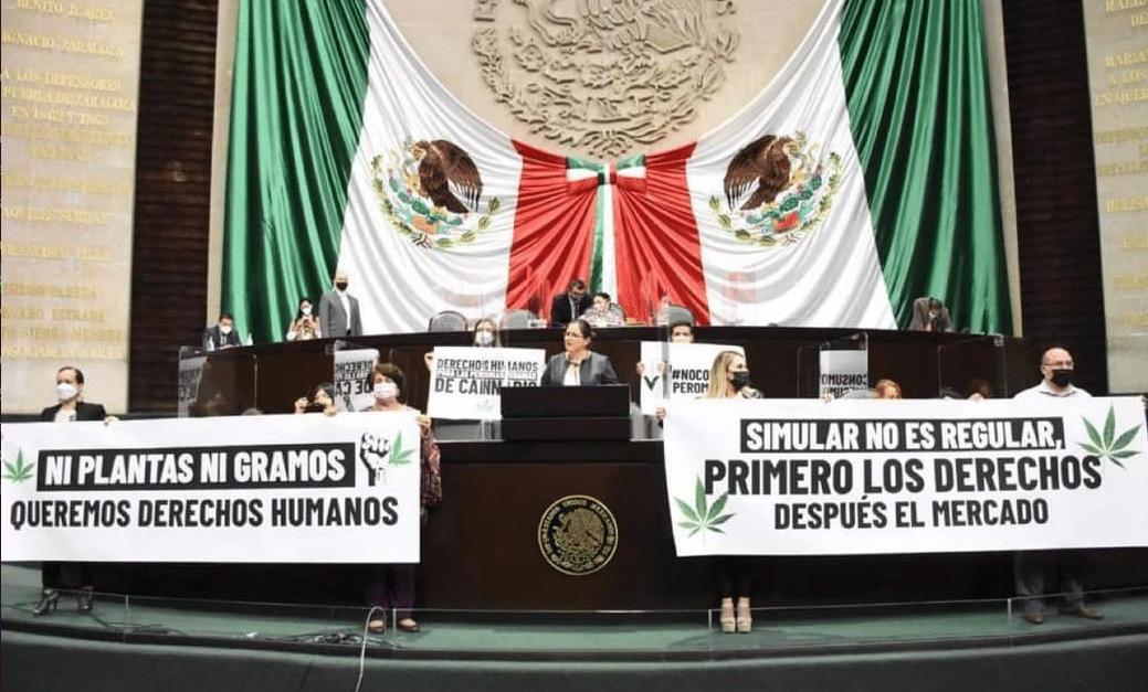 Nación Cannabis | El Senado va por nueva prórroga para legislar el cannabis recreativo