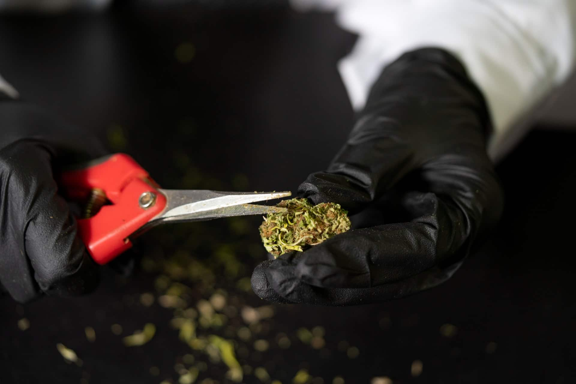 Nación Cannabis | Cómo almacenar tu marihuana