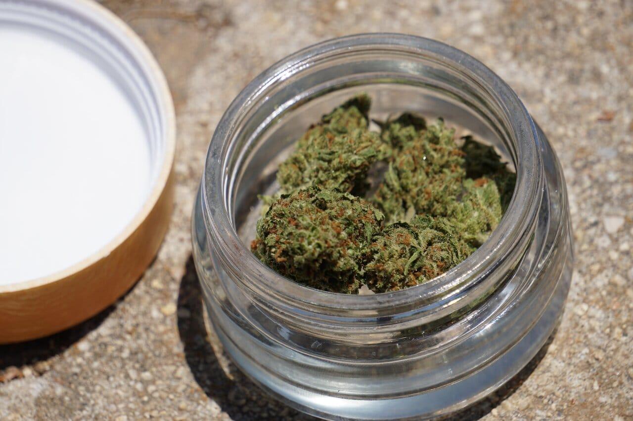 Nación Cannabis | Seth Rogen y Evan Goldberg expanden Houseplant