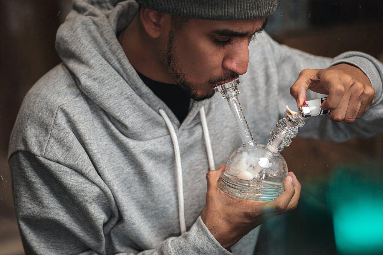 Nación Cannabis | Nextleaf realizará pruebas en humanos para lanzar productos cannábicos