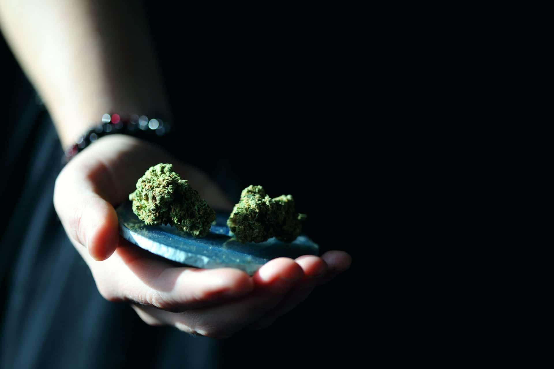 Nación Cannabis | Consumidores de cannabis buscan bienestar emocional